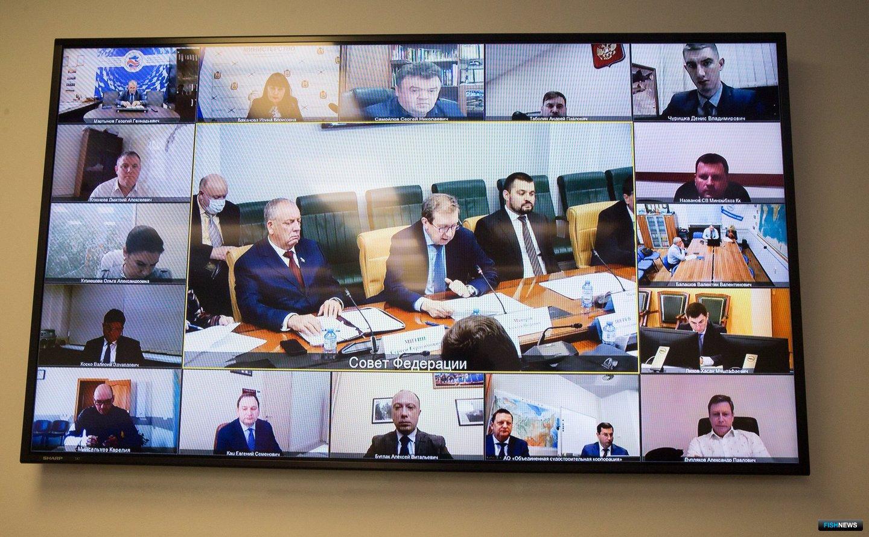 Круглый стол проводился с включением по видеосвязи. Фото пресс-службы СФ