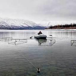 Производителей боганидской палии для эксперимента отловили на озере Собачье. Фото пресс-службы СФУ