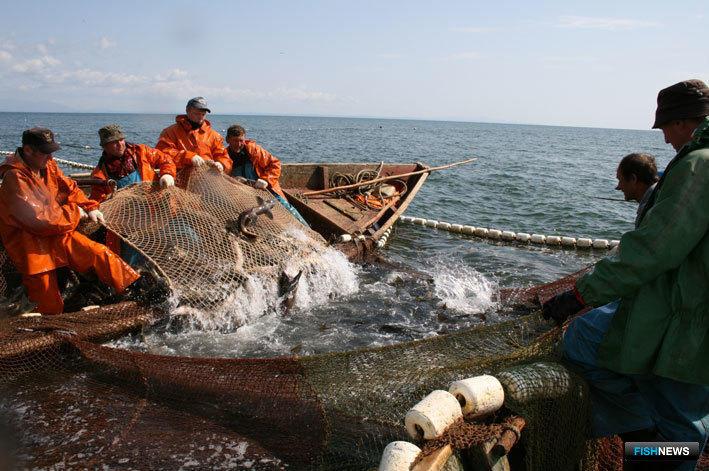 На Камчатке общину аборигенов оштрафовали за прилов полутора тонн лосося