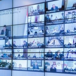 Ряд участников выступил на коллегии по видеосвязи